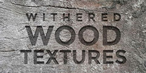 Free Withered Wood Textures